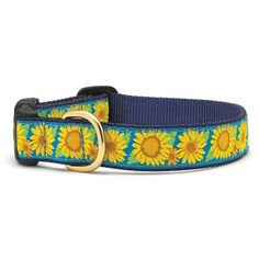 Up Country Bright Sunflower Dog Collar | PupLife Dog Supplies
