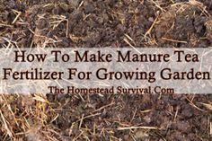 The Homestead Survival | How To Make Manure Tea Fertilizer For Garden | http://thehomesteadsurvival.com