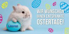 BBprint.ch   Werbeartikel, Werbegeschenke, Werbemittel, Bedruckt Animals, Promotional Giveaways, Projects, Animales, Animaux, Animal, Animais