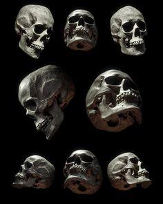 Billelis Skull Photo Stock Pack on Behance Skull Reference, Figure Reference, Anatomy Reference, Skull Face, Human Skull, Skull Model, Skeleton Drawings, Stock Imagery, Skull Wallpaper