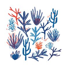 Blue/Red color of Nautical themed print by Zoe Wodarz, Copyright 2018 Ocean Illustration, House Illustration, Pattern Illustration, Character Illustration, Digital Illustration, Coral Drawing, Nautical Prints, Vintage Nautical, Nautical Theme