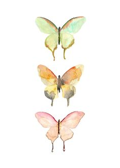 Butterfly Watercolor Print.  Nature Art.