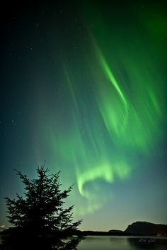 Things I see in Juneau Juneau, Alaska   Spotted®
