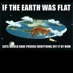 Best argument so far lol