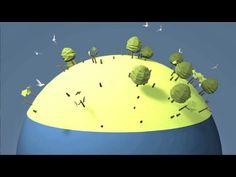 La deforestación - YouTube