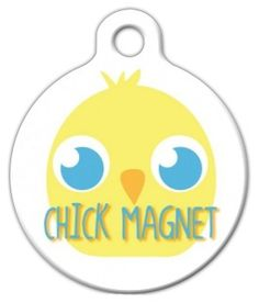 Check out Dog Tag Art's funny pet ID tags for options that vary from punny to adorable. Show off your sense of humor with any of the dog pun collar tags. Dog Id Tags, Pet Tags, Nerd Chic, Tag Image, Personalized Tags, Pet Id, Cat Collars, Tag Art, Small Dogs