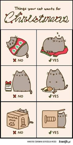 Things your cat wants for Christmas