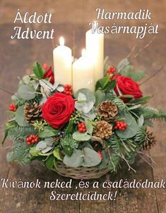 Wreath and candle arrangment classes in December 2019 Book now Wreath and candle arrangment classes in December 2019 Book now Weissundschwarz CPweissundschwarz Deko im Winter Decorate your home with nbsp hellip flower arrangements Christmas Flower Decorations, Christmas Wreaths, Holiday Decor, Candle Arrangements, Floral Arrangements, Outside Decorations, Table Decorations, Winter Flowers, Fresh Flowers