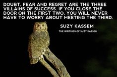 Doubt, fear and regret are the three villains of success. If you close the door on the first two, you will never have to worry about meeting the third. ― Suzy Kassem, Rise Up and Salute the Sun: The Writings of Suzy Kassem