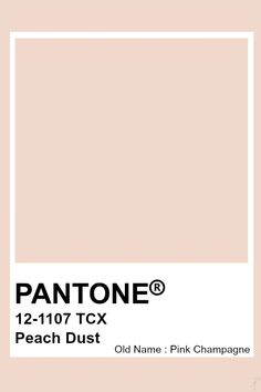 Pantone Peach Dust Old Name: Pink Champagne