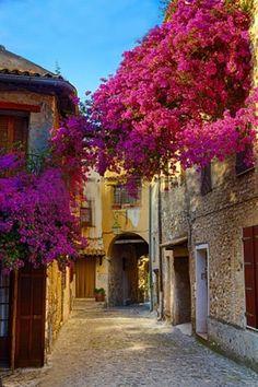 Provence, France UNA DE LAS LINDAS CALLECITAS QUE NOS HACEN SOÑAR.