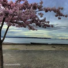 By @vancouverforlife #Vancouver Good Life #yvr