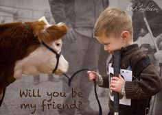Show cattle.  Way in the future but if I have kids I want home to be like this