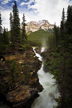 tearingdowndoors: Athabasca Falls – Jasper National Park (By… | denlArt