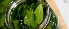 Um fantástico remédio para gripe, gases e dores - e são apenas 2 ingredientes! - http://comosefaz.eu/um-fantastico-remedio-para-gripe-gases-e-dores-e-sao-apenas-2-ingredientes/