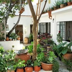 14 Lugares increíbles de Oaxaca para rentar por menos de $1000 la noche