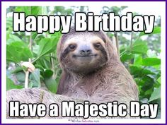Funny Animal Birthday Meme: Have a majestic day!