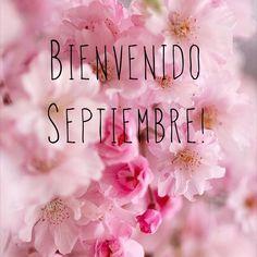 Bienvenido septiembre !!!