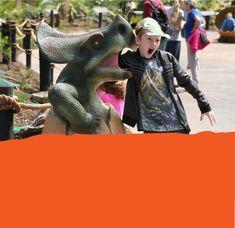 Dinosaur Kingdom Butterfly House, Sabbatical, Tropical Birds, Farm Animals, New Zealand, Good Books, Lion Sculpture, Elephant, Creatures