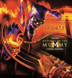 55 Best Revenge of the Mummy ride images | Revenge, The ...