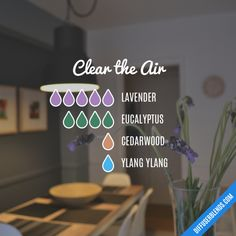 Clear the Air Essential Oils Diffuser Blend ••• Buy dōTERRA essential oils online at www.mydoterra.com/suzysholar, or contact me suzy.sholar@gmail.com for more info.