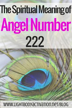 Angel Number 222 says trust your intuition... Feliz Navidad... Have a #Wonderful #Falalalalalalalala #Month #Peace and #Love #SWaGKing