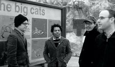 Jason White and The Big Cats.
