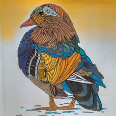 Mandarin #duck from the #colouringbook #birds by #georgiewoolridge #kleurenvoorvolwassenen #coloringbook #gelpens #pastels