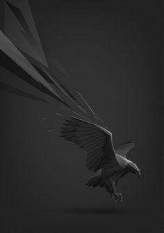 Animal illustrations by Ilya Andreev
