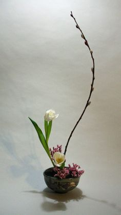 Simple ikebana with tulips, confetti statice and pussy willow / / / / /   BOWL