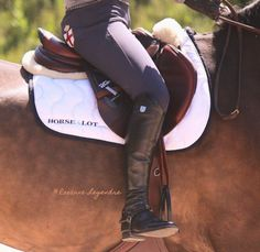 "CWD 2gs saddle paired with a ""horse a lot"" saddle pad"