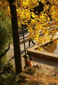 5 picnic spots in Paris, & the best (most delicious) ways to get there - www.MyFrenchLife.org