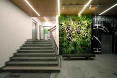 Office entrance verticla garden wall
