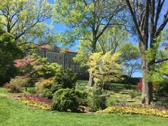 Southern Spring at Cheekwood Botanic Garden Botanical Gardens, Colorful Flowers, Houseplants, Container Gardening, Southern, Around The Worlds, Bloom, Spring, Outdoor Decor