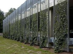 Garden Design Ideas : sound proofing facade treatments | Forum | Archinecthttp://archinect.com/forum/t
