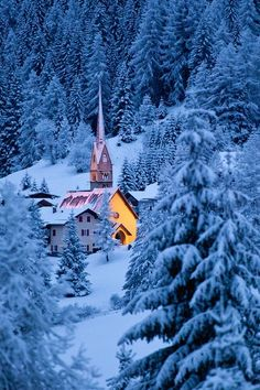 Church Highlighted in Snowy Forest.  The Dolomites, Italy