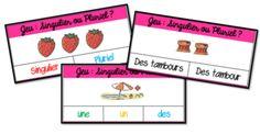 singulier pluriel cartes à pinces Jeux de français CP et CE1