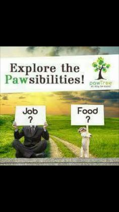 Do you have cats? Do you like to feed them the very best food? Look no further paw tree has all natural cat and dog food with real meats, fruit and vegetables. Im with paw tree. Our sale this month is. BOGO and one goes to Dallas Pets Alive Charity. Includes wet and dry foods for either animal and paw pairimgs. Full money back guarantee. Pawtree.com/loveforcats. I'm also looking for people to join my team