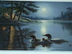 My favorite painting of Loons
