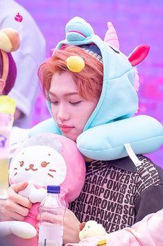 Lee Min Ho, Guys My Age, Kim Woo Jin, 365days, Felix Stray Kids, Kid Memes, Kids Wallpaper, Lee Know, Kpop Boy