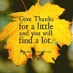 Give thanks for a little and you will find a lot thanksgiving thanksgiving pictures thanksgiving images give thanks thanksgiving quotes quotes for thanksgiving thankful quotes thanksgiving quotes and sayings Mabon, Thanksgiving Quotes, Happy Thanksgiving, Thanksgiving Blessings, Thanksgiving Pictures, Canadian Thanksgiving, Thanksgiving Appetizers, Thanksgiving Outfit, Thanksgiving Crafts