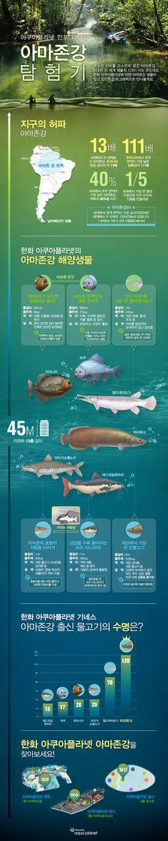 아마존강 인포그래픽 http://www.aquaplanetstory.com/437
