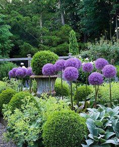 Always pretty pocket garden featured in my first book, In the Garden. Landscape Design, Garden Design, Pocket Garden, Purple Garden, Garden Features, Front Yard Landscaping, Landscaping Ideas, Garden Styles, Dream Garden