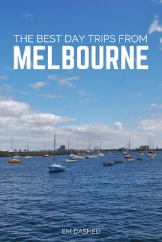 Four of my favorite options for day trips from Melbourne, Australia, whether you want to stay near the city or explore further into country Victoria. Includes directions from the CBD, as well as tips on what to see and do in each spot.