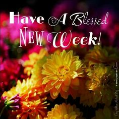 Have A Blessed New Week! monday good morning happy monday new week good morning monday new week quotes new week pictures new week sayings Good Morning Happy Monday, Good Morning Friends Quotes, Happy New Week, Morning Greetings Quotes, Good Morning Good Night, Good Morning Wishes, Happy Weekend, Weekend Greetings, Morning Pics