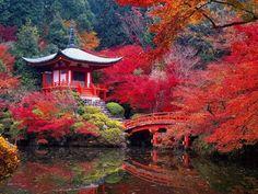 Daigo-ji Buddhist Temple in Autumn - Kyoto, Japan