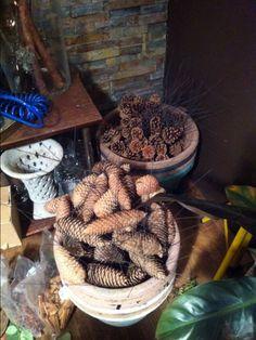 Stifte kongler Stuffed Mushrooms, Vegetables, Food, Stuff Mushrooms, Essen, Vegetable Recipes, Meals, Yemek, Veggies