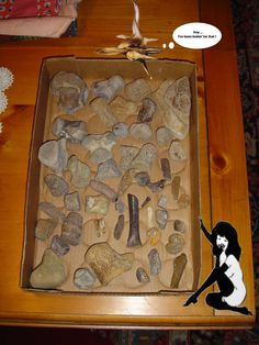 NSR http://www.frankpoye.com/fossilosophy