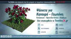 Κηπουροί Γεωπόνοι Συντήρηση Κήπων  210.66.19.897 Texnites24.gr