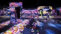TeamLab, Flower Forest: Lost, Immersed and Reborn (2017)